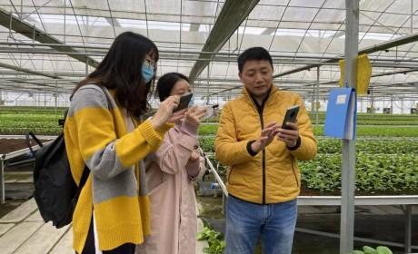 """""""盒马村""""模式引领农业数字化升级"""