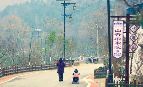 培育1000个乡村建设示范村,河南将大力推动乡村建设