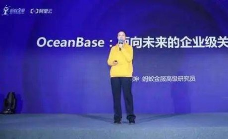 蚂蚁集团自研数据库OceanBase将于近期开源代码
